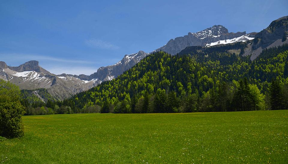montagne-de-la-drome-960px