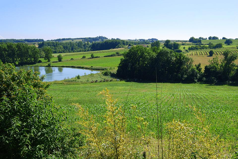 Balade à cheval en Dordogne
