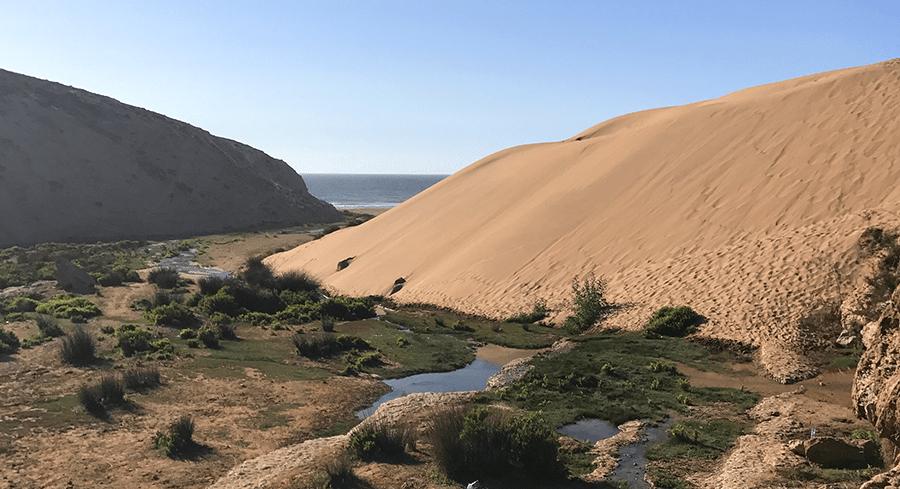 dune-de-sable