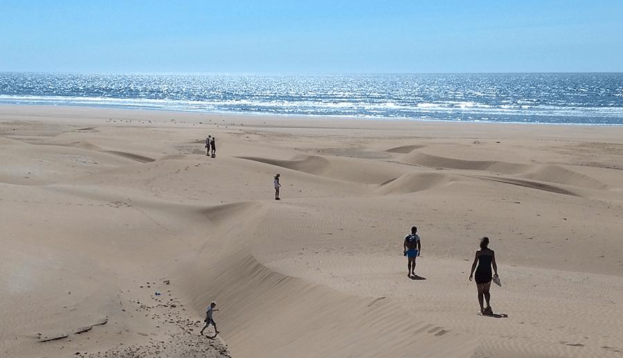 randonnée de chameau en bord d'océan